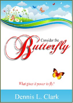cd album consider the butterfly 250 Store